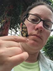 2 Mindo Butterflies 7