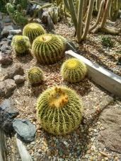 4 Botanical Gardens 22
