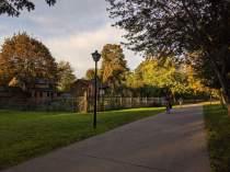 2nd Community Gardens